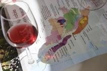 Bordeaux Wine 101